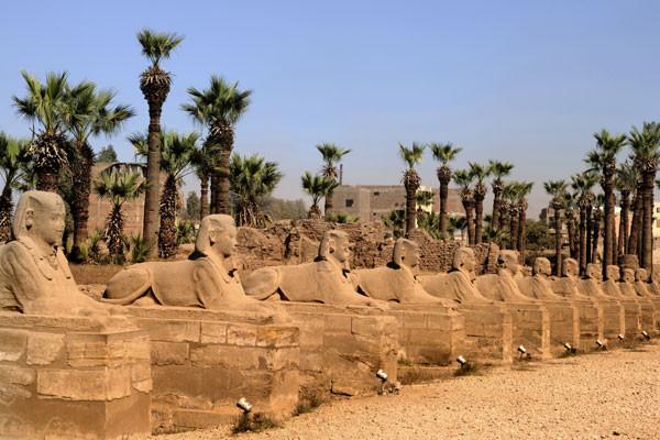 Croisière Egypte : Osiris